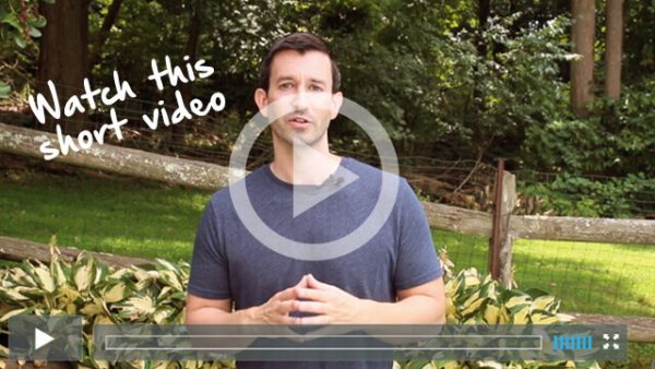video smoothie diet lose weight fast